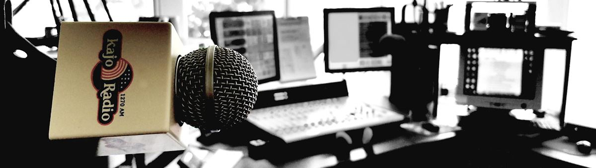 Microphone and setup inside the KAJO Studio
